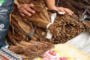 Tabaco en hoja seco